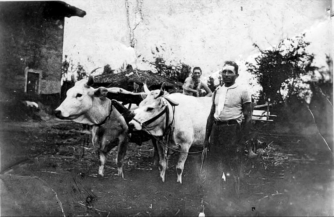 Vallona 1940