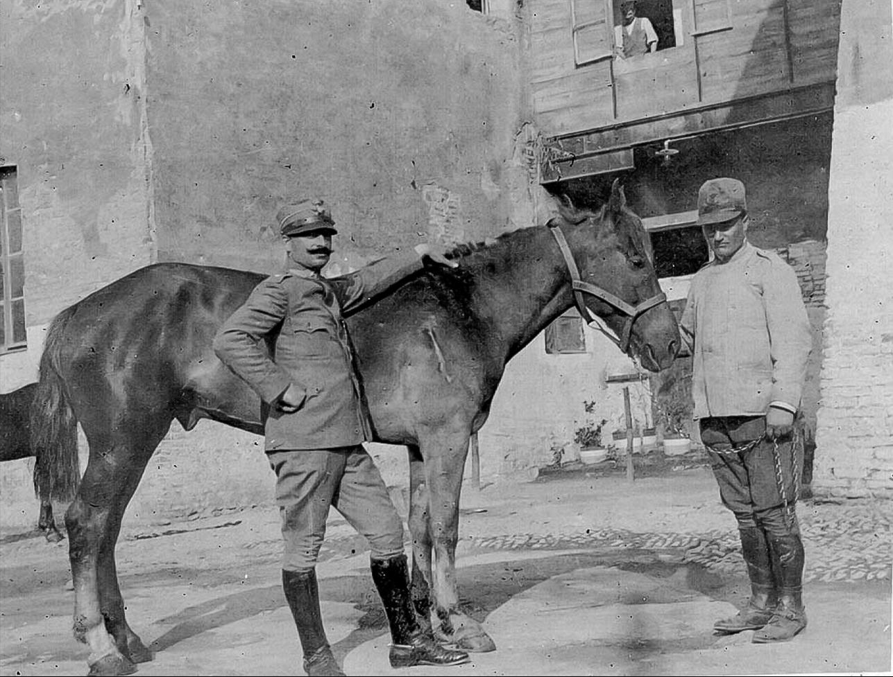 1916 Il veterinario