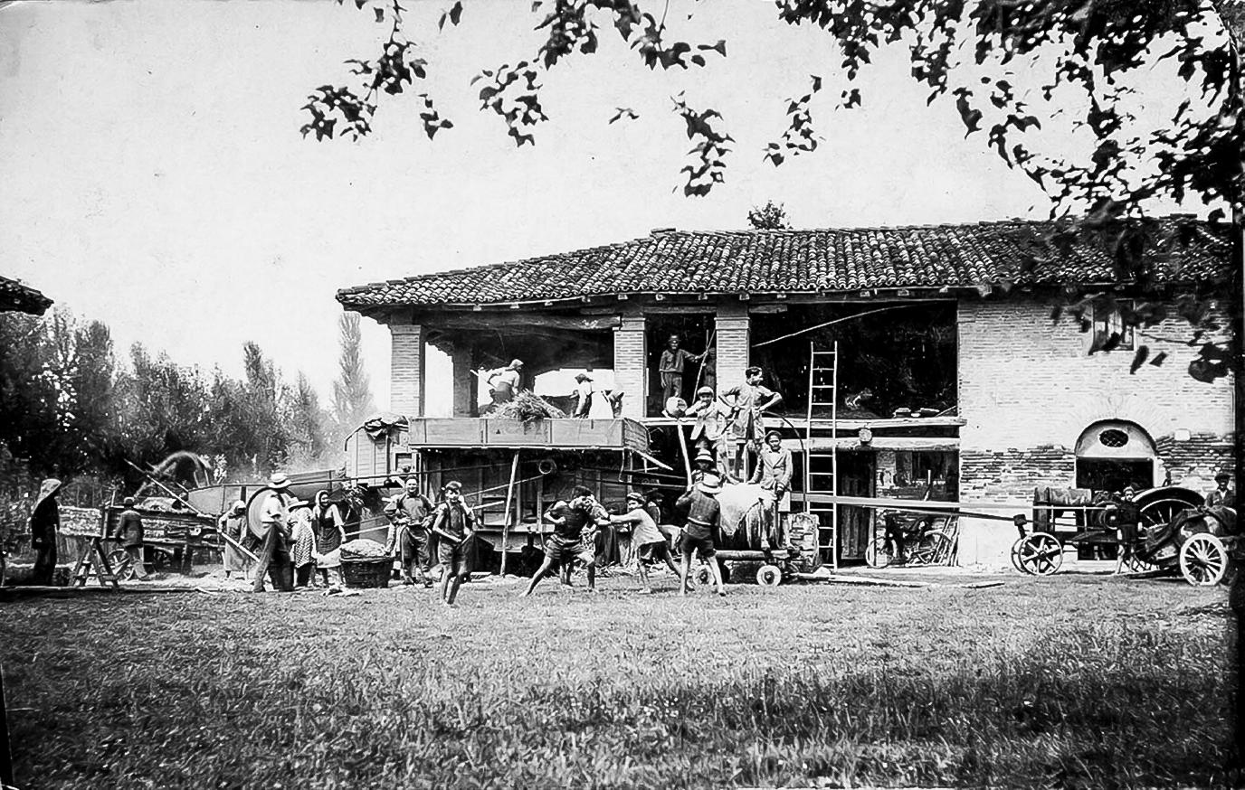 1938 Trebbiatura del grano
