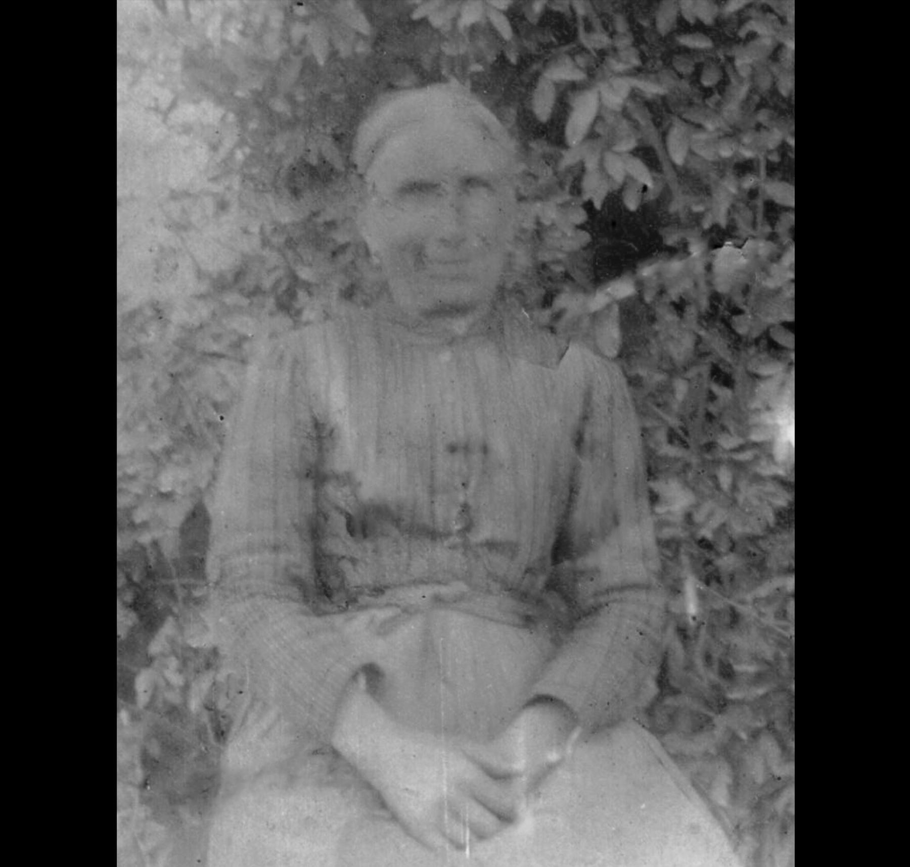 Marièn al patnèr  cardatrice di lana