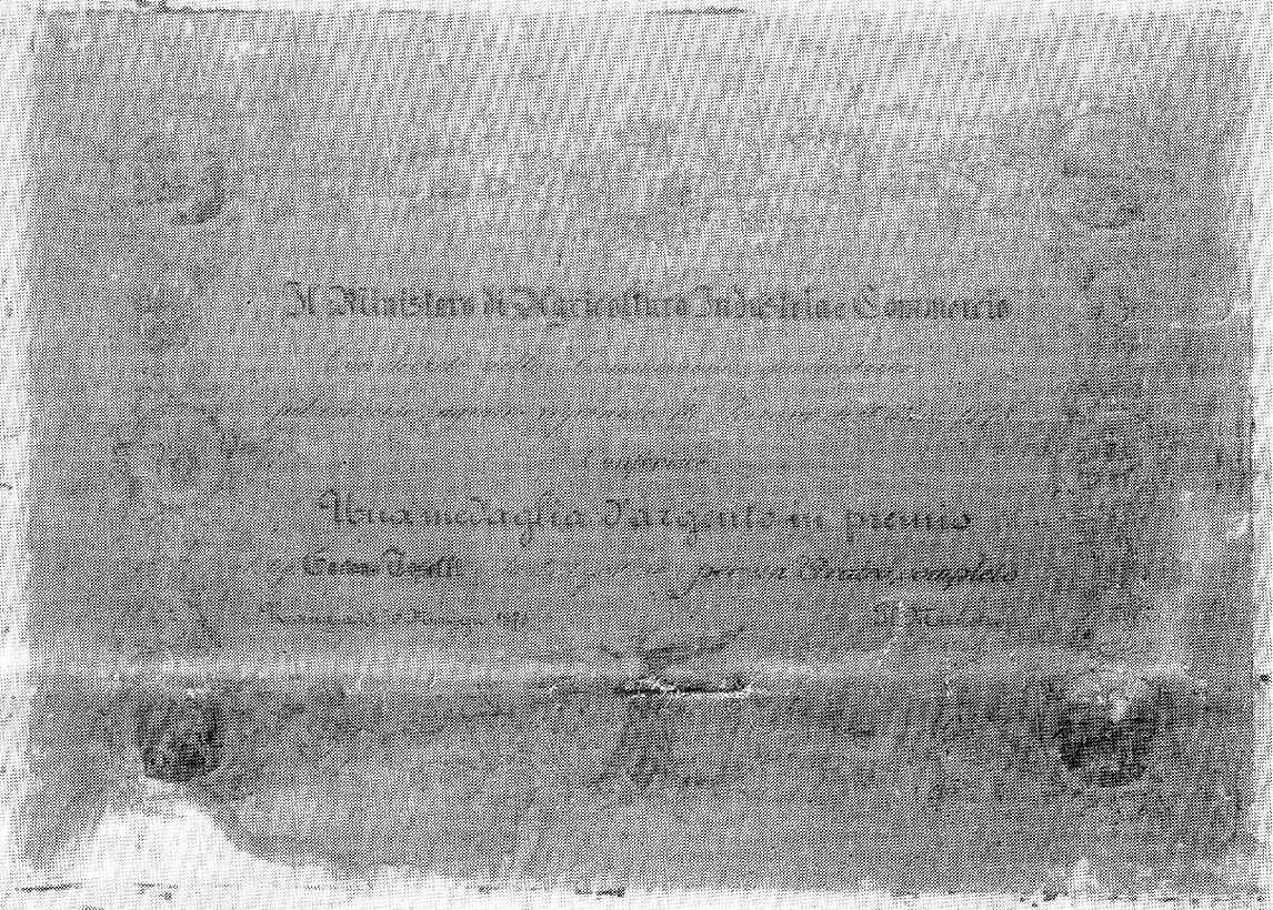 Toselli Gaetano  Diploma 1875