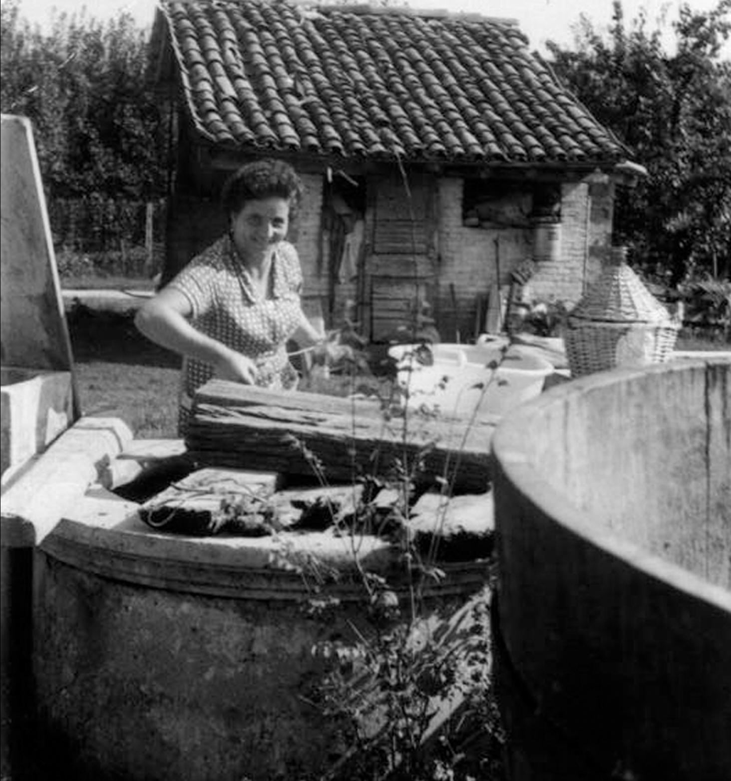 Rosina, moglie di Luigi Malaguti, nei preparativi della vendemmia