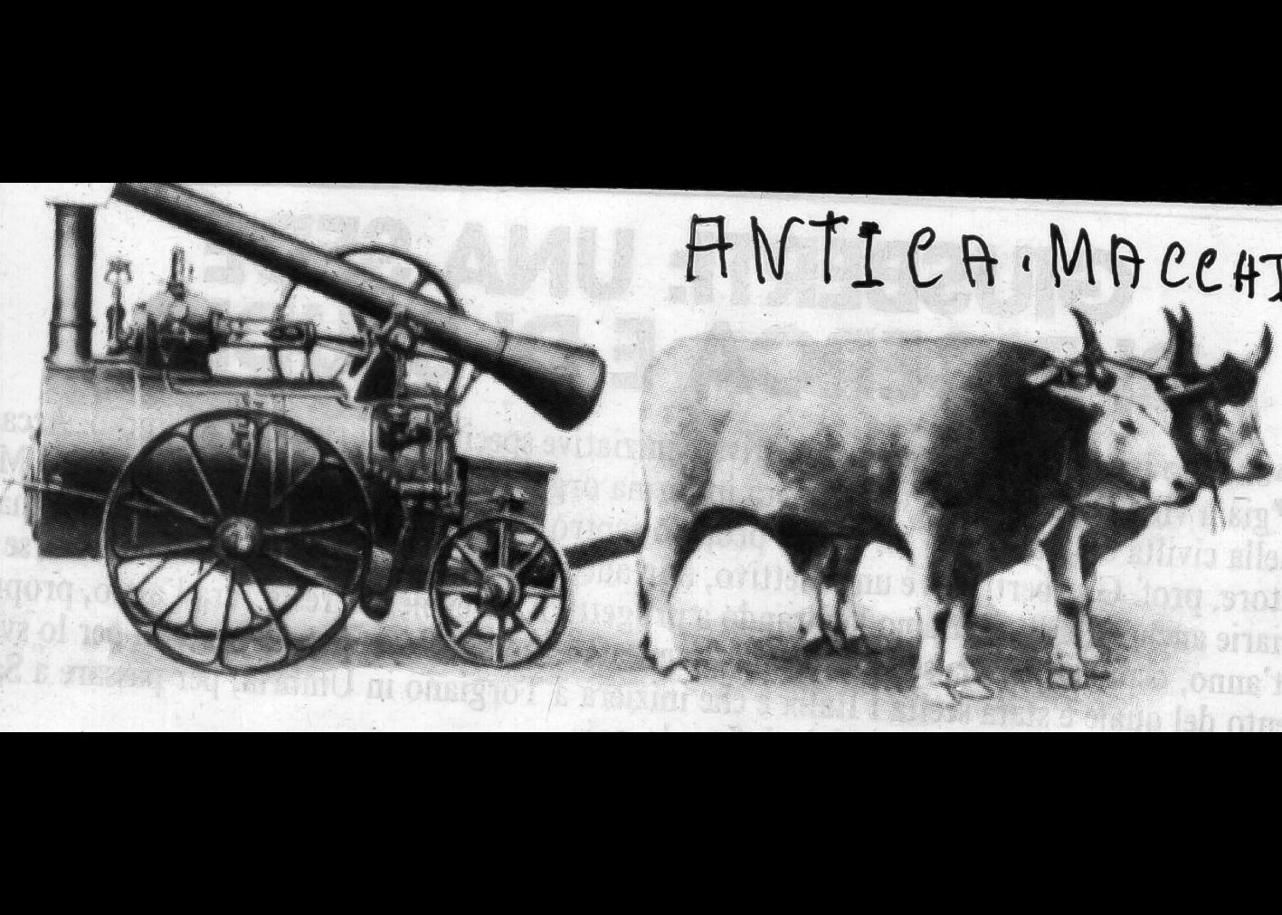 Locomotore a vapore con buoi