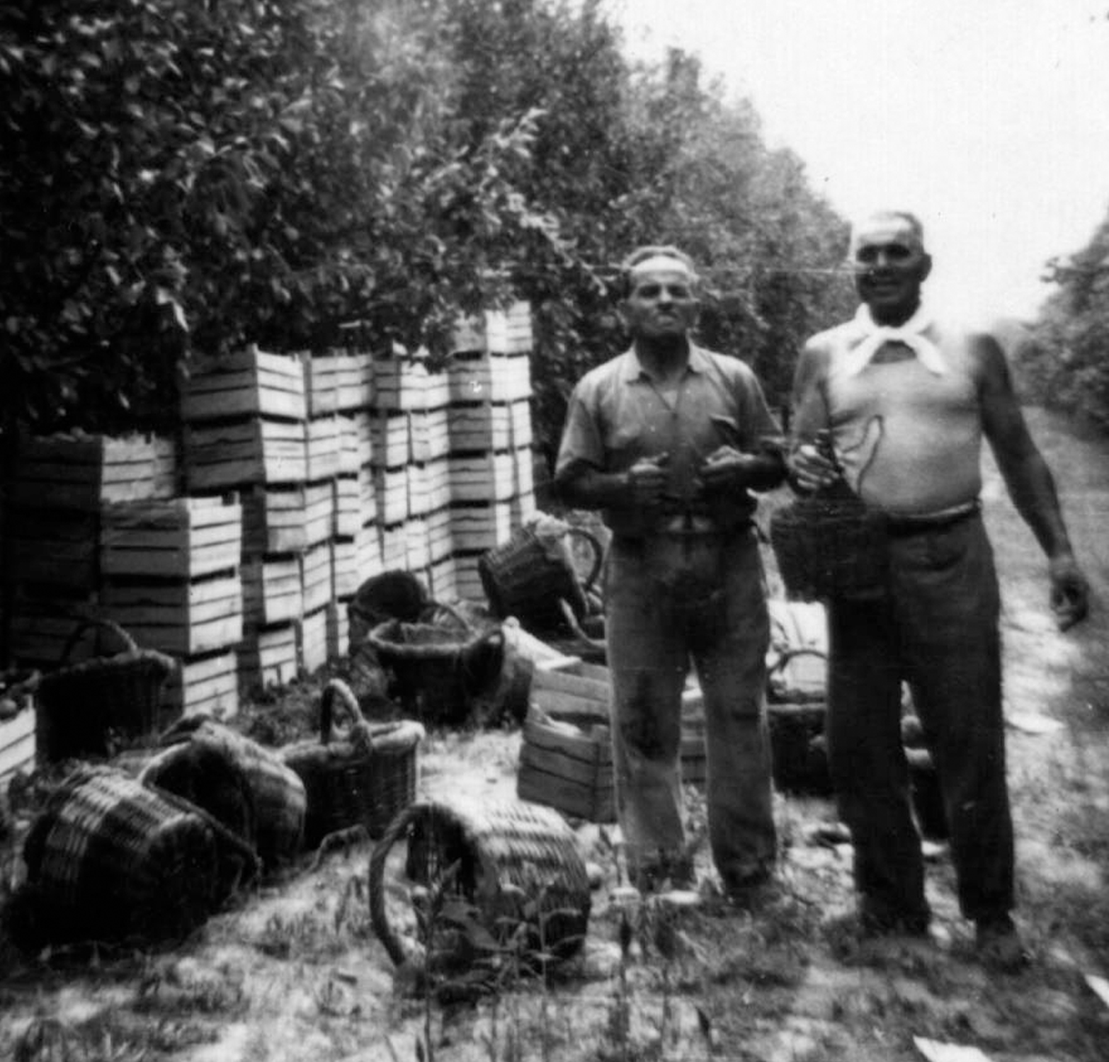 Ghelfi Demetrio e Caselli Nando