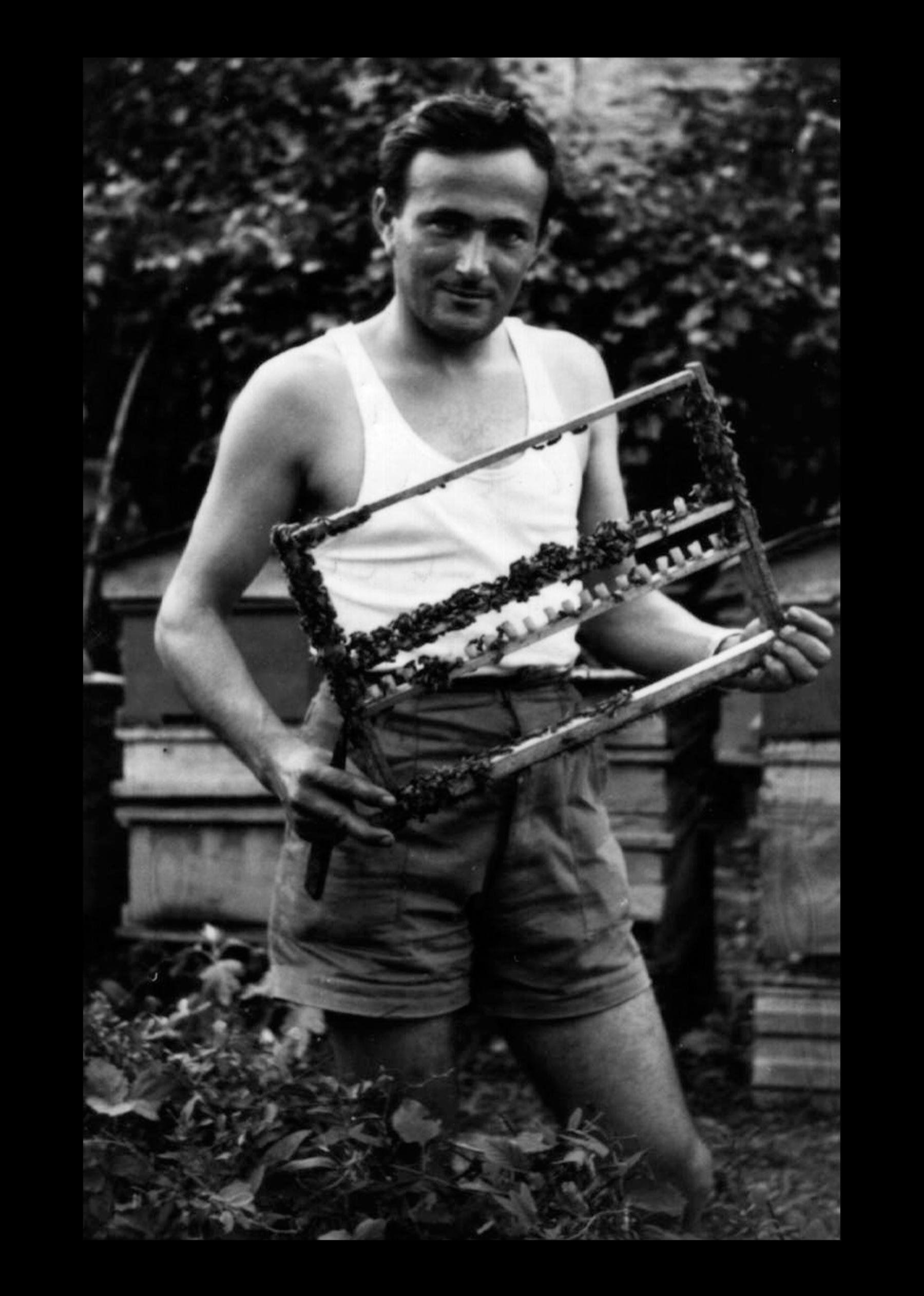 Bruno Ansaloni - Apicultore - con telaio api