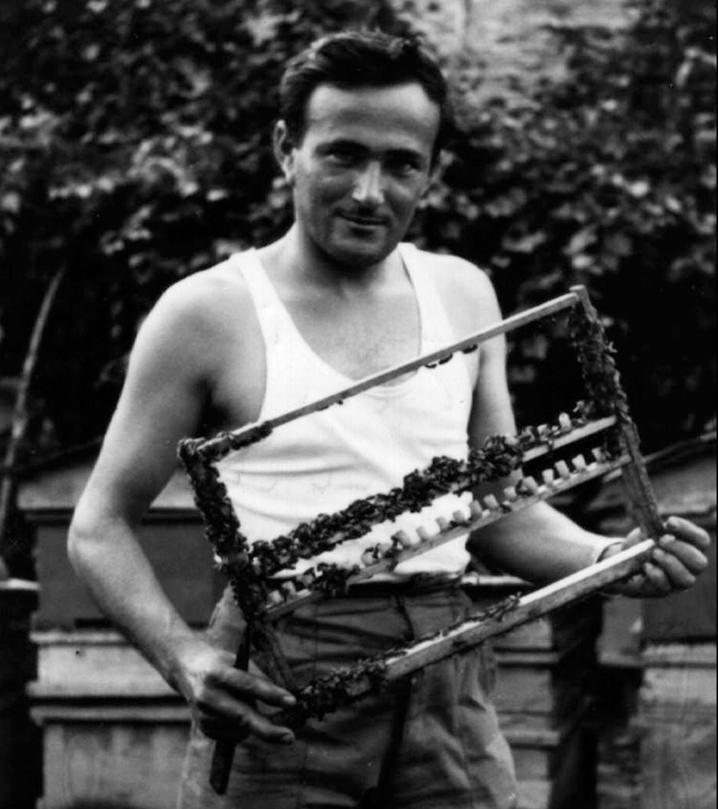 Bruno Ansaloni – Apicultore – con telaio api